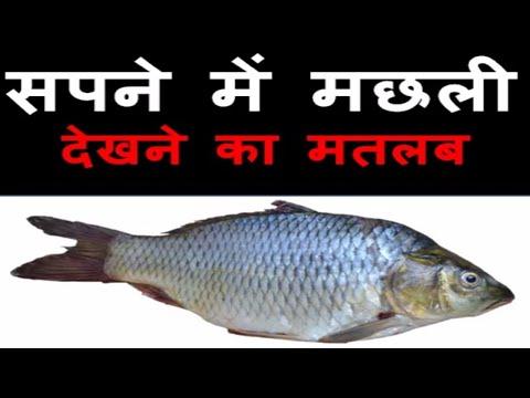 सपने में मछली देखने का मतलब | Sapne Me Machli Dekhna | Pakadana | Khana | Kharidna