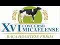 XVI Concurso Micaelense - Raça Holstein Frisia