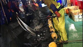 日本一周女ひとり旅263日目。富山県の水橋漁民さんのホタルイカ漁に同行Live