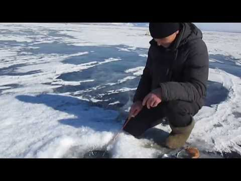 о на озере гусинное рыбалке