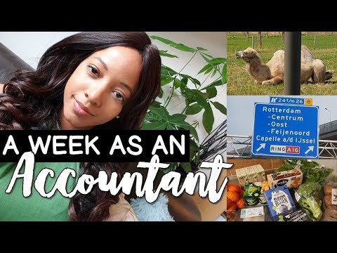 ACCOUNTANT / AUDITOR (PwC, KPMG, EY, Deloitte) | A Week in t