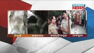 Mysterious Animal Kills Sheep In Various Parts of Odisha