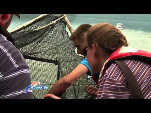 Aqua Kids 2013 13  Maine -  Penobscot Biodiversity
