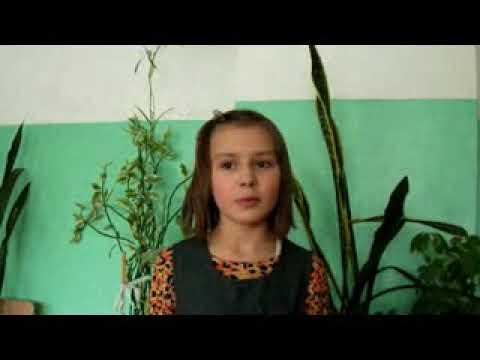 Изображение предпросмотра прочтения – МарияВаулина читает произведение «Макарошки» (Русский фольклор )