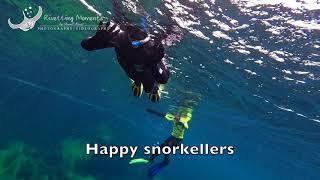 Ewens Ponds EMS snorkel