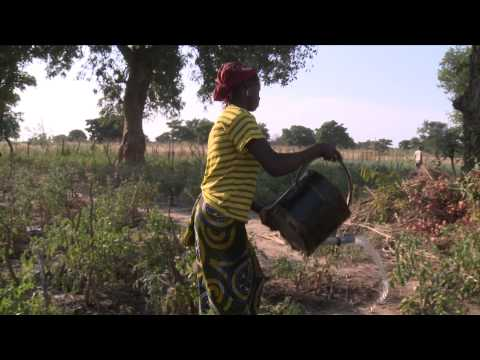 SAHEL AGIR - Breaking the cycle of emergency in the Sahel and West Africa