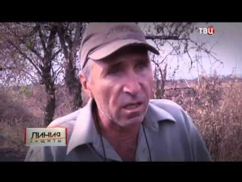 Украина. Назад дороги нет? Линия защиты