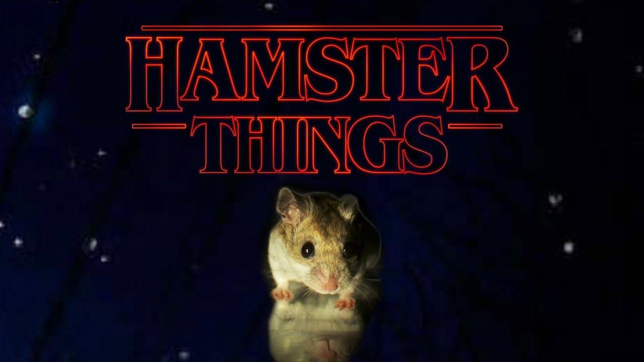 hamster things stranger things