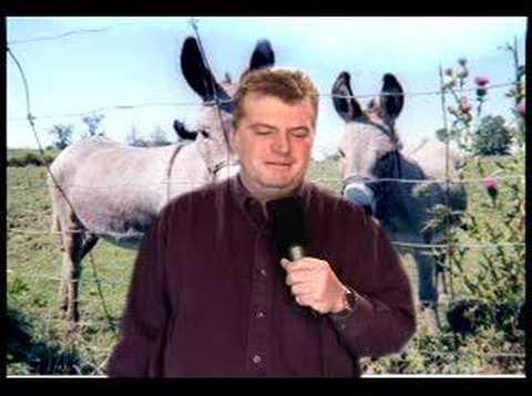 Elephants, Donkeys, Big Ears, Oh My!