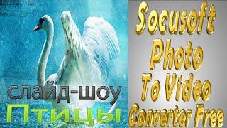"Socusoft Photo To Video Converter Free.Видео "" Птицы"",2560 на 1440."