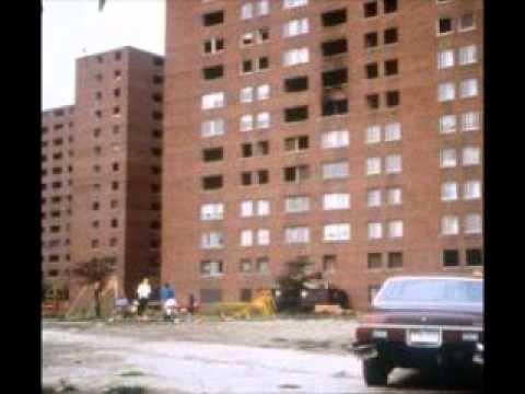 Chicago Housing Authority.wmv