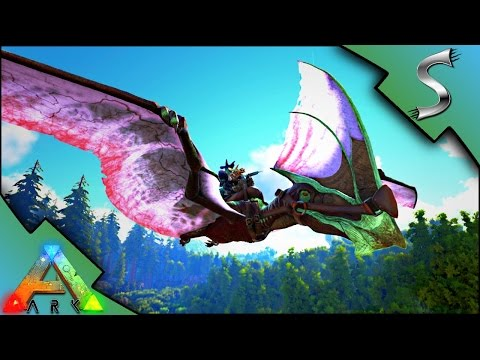 TAPEJARA & ARCHAEOPTERYX TAMING! FUNNIEST TAME EVER! NIGHT V