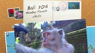 Заведи ручную мартышку! / Лес обезьян Убуд / Monkey Forest Ubud Bali