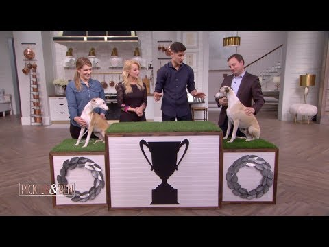 These Top Dogs Have Some Serious Sibling Rivalry - Pickler & Ben
