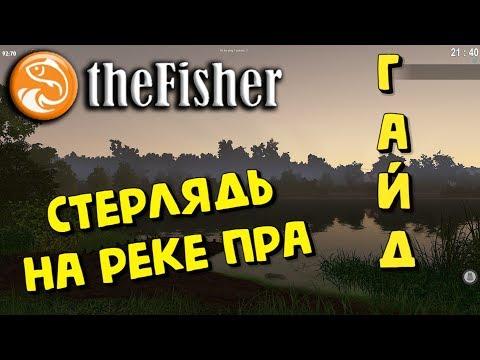 The Fisher Online - СТЕРЛЯДЬ на реке ПРА