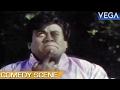 Senthil Been Chased By Donkeys || Paattu Vaathiyar Tamil Movie || Comedy Scene