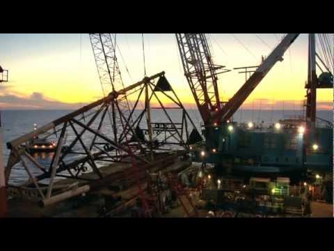 Nippon Platform Installation