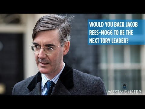 Would you back Jacob Rees-Mogg to be the next Tory Leader?