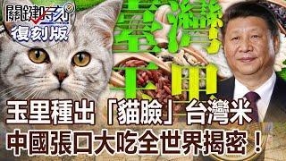 【關鍵復刻版】玉里種出「貓臉」 台灣米中國張口大吃全世界揭密 20151020 全集 關鍵時刻劉寶傑