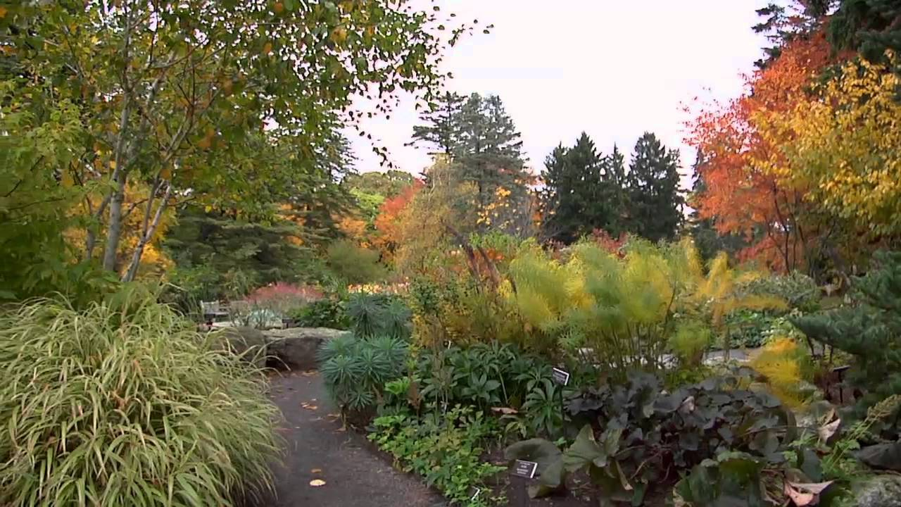 Treasures Of New York: The New York Botanical Garden   YouTube