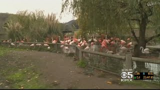 North Bay Wildlife Preserve Reopens For First Time Since Wine Country Wildfires