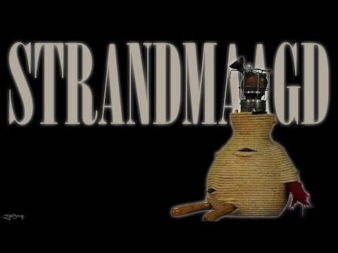 Sjon Brands bird/vogel 04: 'Strandmaagd'