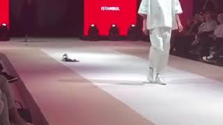 Кошка на показе мод в Турции