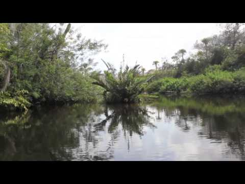 Loxahatchee River Adventure - Inside The Camp Of Trapper Nelson