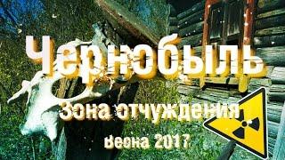 Чернобыль  Зона отчуждения 2017