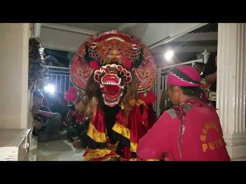 Barongan samboyo putro ritual penghormatan punden angker sonoageng