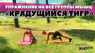 Как проработать все группы мышц за одно упражнение Крадущийся тигр