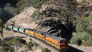 Adelaide Hills Rail Action - 10th March 2015