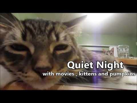 Quiet Night 10.13.18 day1935