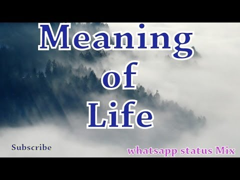 Meaning Of Life Quotes Video Whatsapp Status Mix 30 Seconds