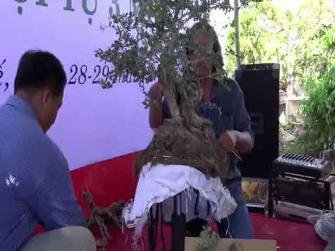 kỹ thuật làm lũa cây linh sam của Nghệ nhân Phạm Hữu Tâm (A. Trắng) f2.flv