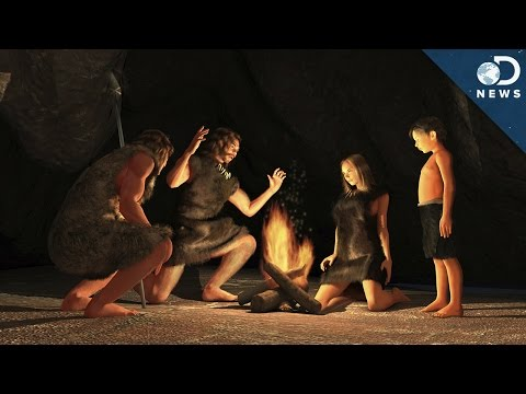 What Did Prehistoric Humans Actually Eat?