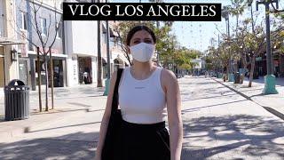 LOS ANGELES VLOG Планирую липосакцию Шоппинг в Америке Загораем гуляем зима в ЛА