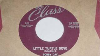 Bobby Day - Little Turtle Dove