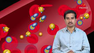 Cholesterol biosynthesis and clinical application - Usmle step 1 Biochemistry quick review lecture