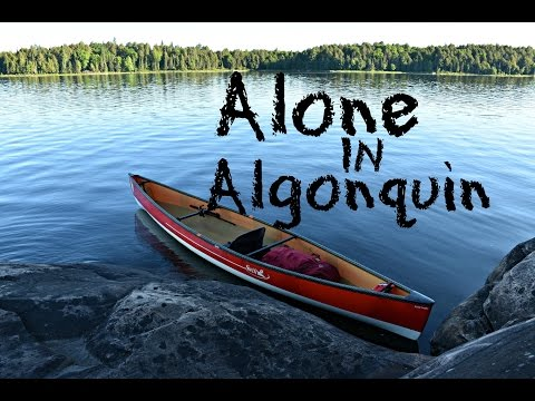 Alone In Algonquin. Day 1 - MOOSE