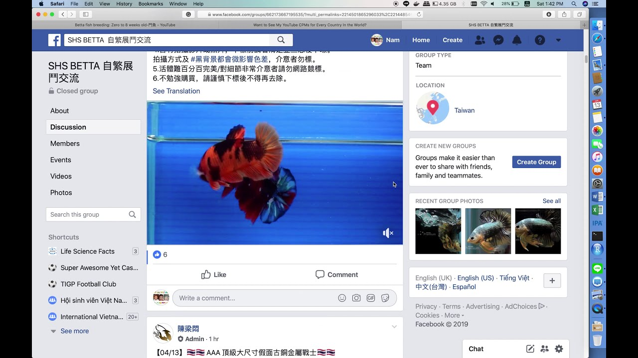 How to buy betta fish from online market in Taiwan Part-1
