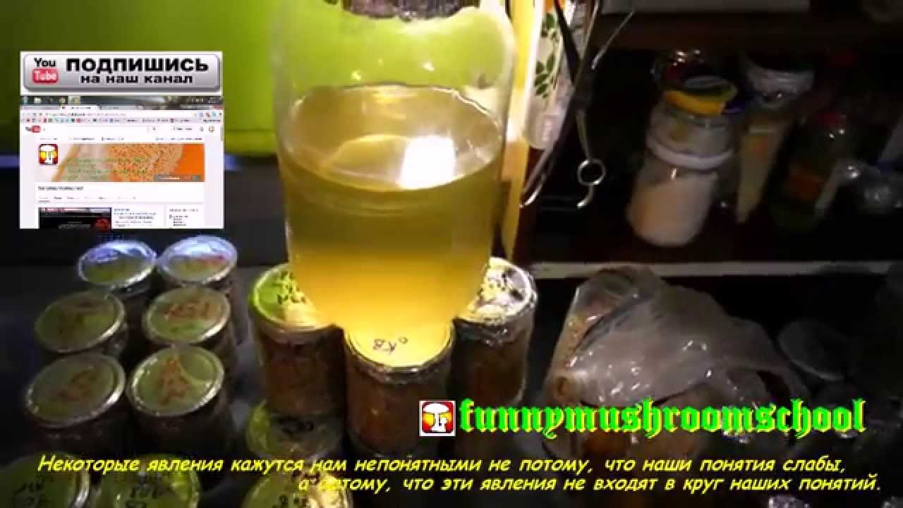 Устройство ПЭ-2010 для сушки лабораторной посуды (Стенд) - YouTube