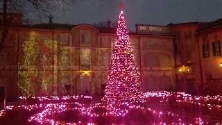 箱根 星の王子様 ミュージアム ガーデンのプロジェクトマッピング starly night event video 夜だけの星の王子様がが見れます。特別 月も輝いてお...