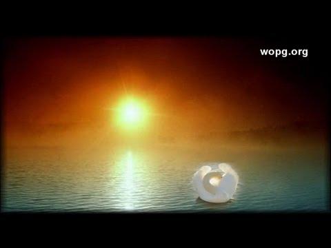 Perfect ♪ ♫ ♥ :: Prem Rawat