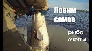 Ловля сома на перемет день 1-й (средняя Волга открытие сезона)