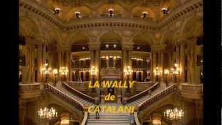 Video LA CALLAS  LA DIVA DU XXème SIECLE LA WALLY download MP3, 3GP, MP4, WEBM, AVI, FLV Juni 2018