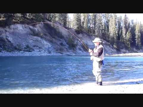 Banff National Park Fly-fishing