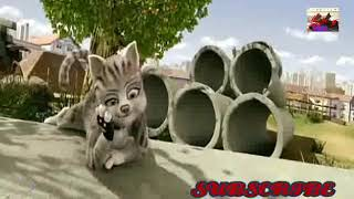 Animation animal comedy action most popular movie in hindi Best action movies in Passion action zone