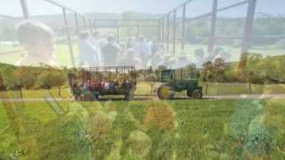Cove Run Farm - Garrett County Maryland