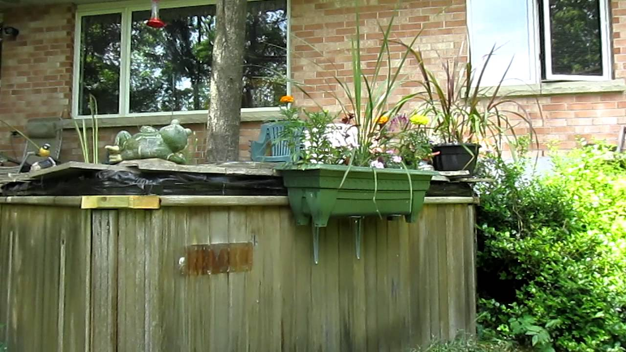 Hot Tub Water Garden   YouTube